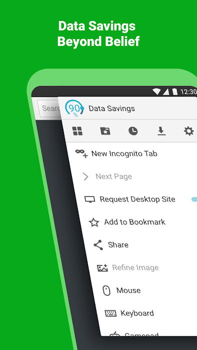 Puffin Browser PRO Data Saving